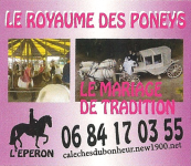 royaume_poneys.png - PNG - 560.6 ko - 497×432 px