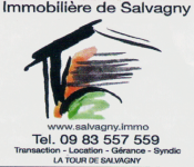 immobiliere_de_salvagny.png - PNG - 361.5 ko - 500×430 px